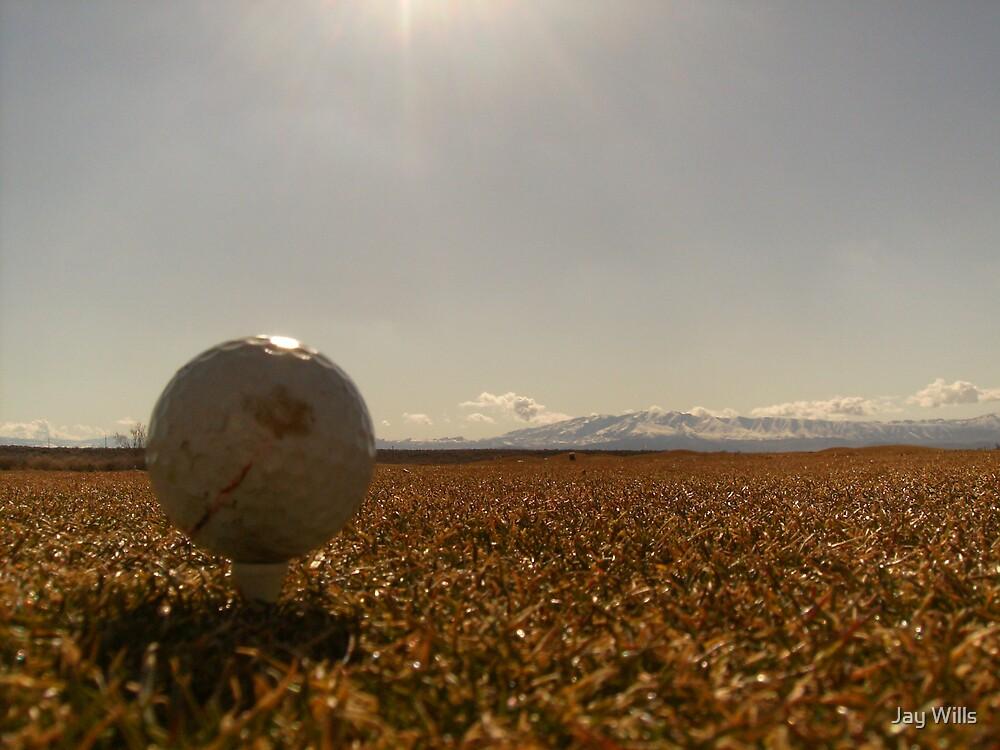 Golfers Dream by Jay Wills