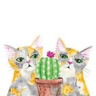 Curious Calico Cats and a Cactus by Ryan Conners