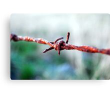 Barbed wire. Canvas Print