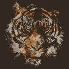 Tigre by fixtape
