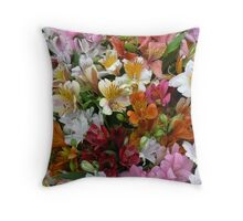 a rainbow of colours Throw Pillow