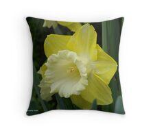 Yellow & White Daffodil Throw Pillow