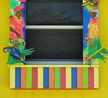 Crazy Window by Peri