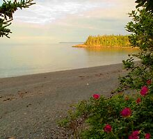 Racoon Beach at sunset, Campobello Island by Alana Ranney