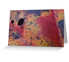 Holes Greeting Card