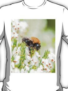 Tree Bumble Bee T-Shirt