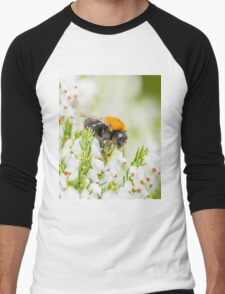 Tree Bumble Bee Men's Baseball ¾ T-Shirt