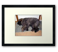 Tired Out Framed Print
