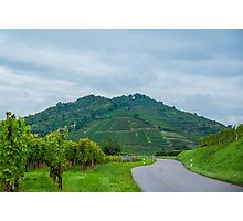Kaiserstuhl, South-West Germany Photographic Print