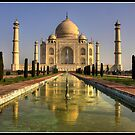 Dawn at the Taj Mahal by Shaun Whiteman