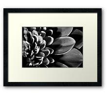 B/W MacroFlower One Framed Print
