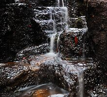 Dip Falls staircase. by Garth Smith