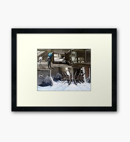 Berry Boy in Rotterdam. Framed Print