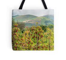 Apple harvest below Bad Berg, Kaiserstuhl, Germany Tote Bag