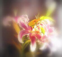 Stargazer Lilies #19 by Dawna Morton