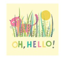 OH, HELLO! by Jane Newland