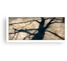 Tree shadow  abstract Canvas Print