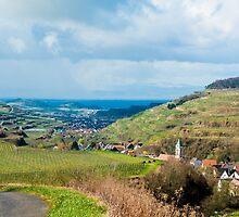 Kaiserstuhl, South-West Germany by Mark Bangert
