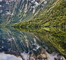 Sunrise at Doubtful Sound, New Zealand by Trishy