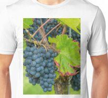 Vineyard, Kaiserstuhl, South-West Germany Unisex T-Shirt