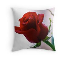 One Rose One Heart Throw Pillow