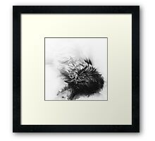 Senescent 4 - charcoal drawing Framed Print