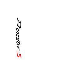 Porsche Boxster S 986 Script by Frank Schuster