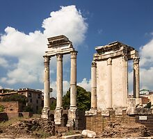 The Ruin of Roman Forum, Rome, Italy by Daniel H Chui