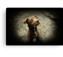 Not Long Now Coco Canvas Print