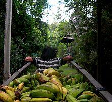 banana run  by robertagiovedi
