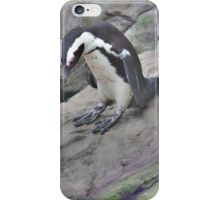 Penguin Sliding On A Rock iPhone Case/Skin