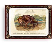 Skunk Ape. Canvas Print