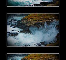 The Blowhole, Phillip Island by Jurgen  Schulz