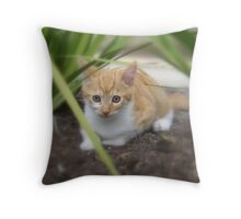 'Playful Mittens' Throw Pillow