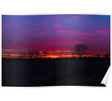 Sunset and the trees Poster