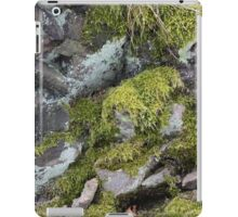 Moss on the rock iPad Case/Skin