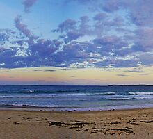 Waterscapes: Illlawarra, NSW: The Headlands, Barrack Point III by Vanessa Pike-Russell