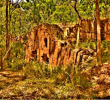 Shadows of The Lost City- Newnes Mining Works Wolgan Valley - The HDR Experience by Philip Johnson