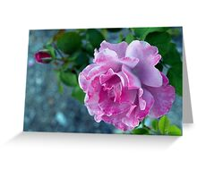 Mottled pink rose and bud Greeting Card