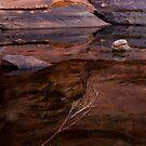 Reflections in Eden by Steven Pearce