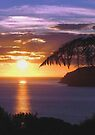 Sunset over Tryphena harbour, Great Barrier Island, New Zealand. by Roy  Massicks