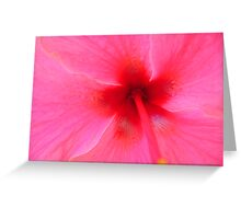 Hibiscus close up Greeting Card