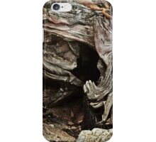 Weathered to Perfection iPhone Case/Skin