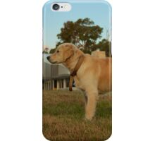 Golden Retriever B iPhone Case/Skin