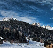 il bosco tra le montagne by Andrea Rapisarda