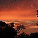 A Western Australian Sunrise by Rick Playle