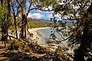 ADVENTURE BAY, BRUNY IS, TASMANIA by Raoul Madden