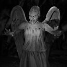 Don't Blink by Yampimon