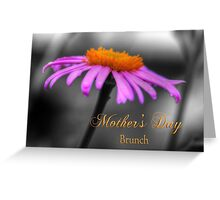 Purple and Orange Coneflower Mothers Day Brunch Greeting Card