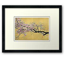Sakura on Gold Framed Print